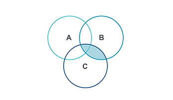 Venn Diagram PPT type 6