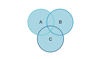 Venn Diagram PPT type 8