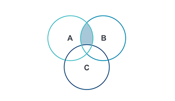 Venn Diagram PPT type 9