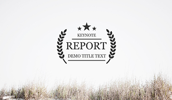 """Report"" Keynote template"