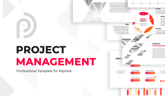 Management Project template