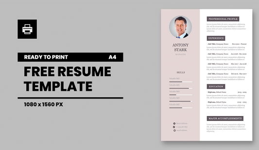 Personal CV A4 Powerpoint template for print