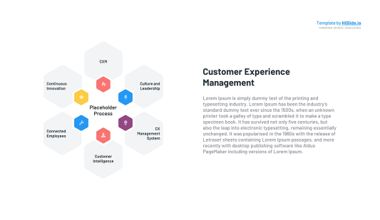 Customer Experience Management PowerPoint Template